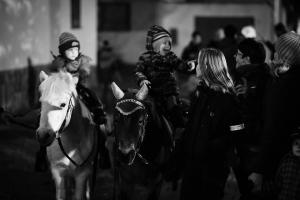 Martin na bílém poníkovi 11-11-2017